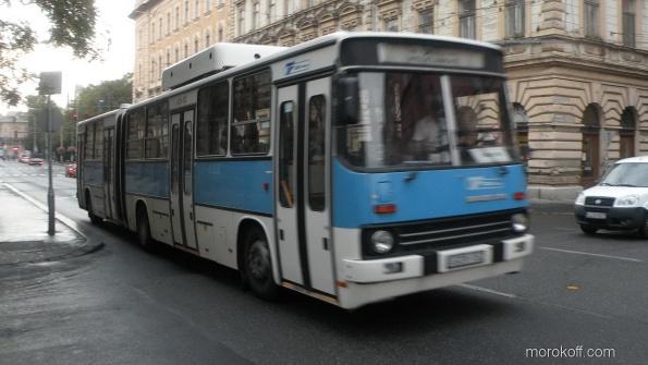 DSCN9823